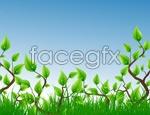 Link toGreen plant vector