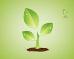 Link toGreen plants psd