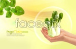 Link toGreen, pollution-free vegetables psd