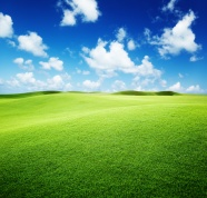Link toGreen prairie landscape pictures