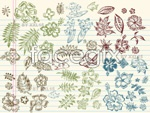 Link toHand-drawn elements collection 1 vector