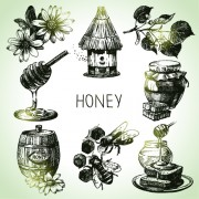 Link toHand drawn honey elements vector icons free