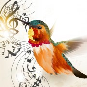 Link toHand drawn hummingbird vector 01 free