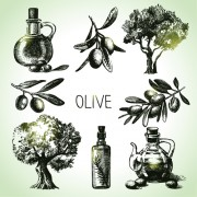 Link toHand drawn olive elements vector icons free