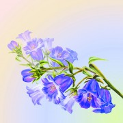 Link toHand drawn watercolor flower background 05 free