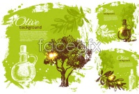Link toHand-painted olive vector illustration