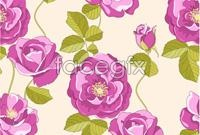 Link toHand-painted purple flowers vector