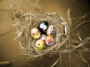 Link toHd art bird egg pictures