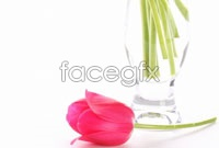 Link toHd bouquets of tulips picture