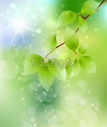 Link toHd branches green background psd image