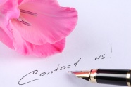 Link toHd flower pen picture download