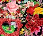 Link toHd flower psd2