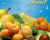 Hd fresh fruit templates psd