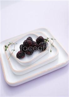 Link topictures fruit mulberry Hd