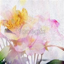 Link toflowers painting oil Hd