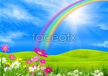 Link toflowers rainbow Hd