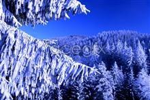 Link toHd snow pho