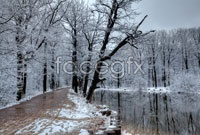 Link toHd winter snow picture