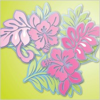 Link toHibiscus flowers vector