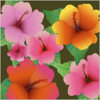 Link toHibiscus flowers