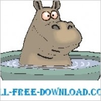 Link toHippo bathing 2
