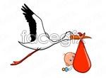Link toHolding the baby bird vector
