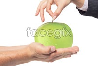 Holding the green apple hd pictures