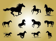 Horse silhouettes vector free