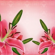 Link toHuge collection of beautiful flower vector graphics 02 free