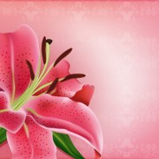 Link toHuge collection of beautiful flower vector graphics 03 free