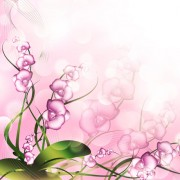 Link toHuge collection of beautiful flower vector graphics 10 free