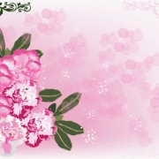 Link toHuge collection of beautiful flower vector graphics 12 free