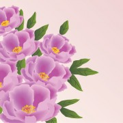Link toHuge collection of beautiful flower vector graphics 13 free