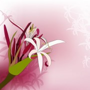 Link toHuge collection of beautiful flower vector graphics 18 free