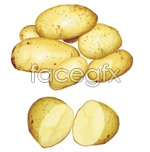 Link toHyper-realistic style potatoes vector