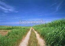 Link to145 village Idyllic