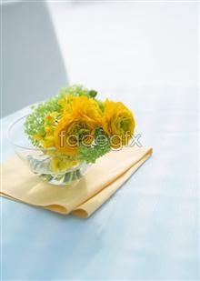 Link to19 flower Indoor