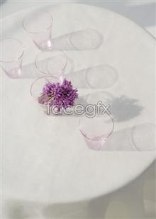 Link toIndoor flower 40