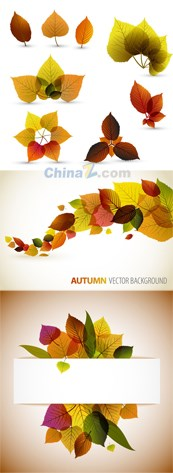 Link toInnovative leaf design vector