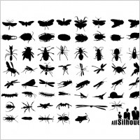 Insect silhouettes.