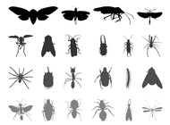 Link toInsect silhouettes vector free