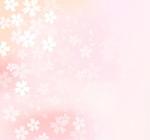 Link toJames cherry blossom flower background vector