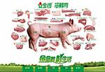 Link toJinluo meat flyer vector