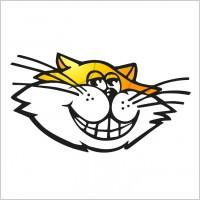 Link toKat fm logo