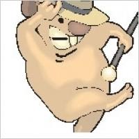 Link toKoala dancing