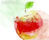 Korea apple watercolor design elements psd