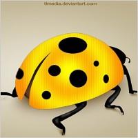Link toLady bug psd