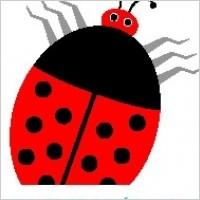Link toLadybug 14