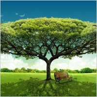 Link toLarge trees and grassland elements psd layered
