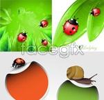 Link toLeaf insect background vector